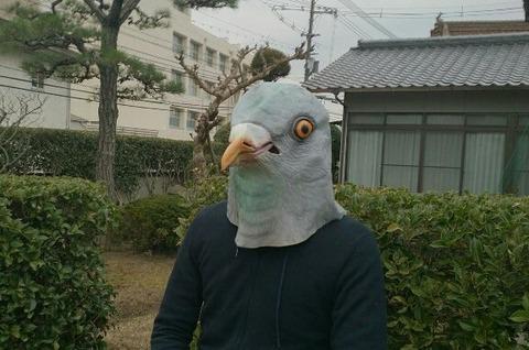 hatootoko