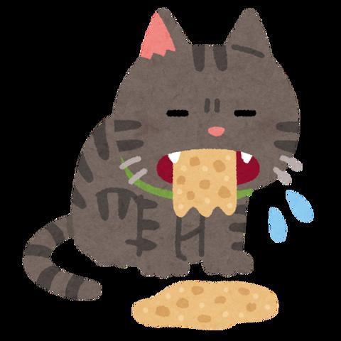 pet_cat_haku_outo