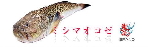 mishima-01