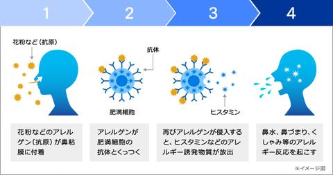 pic_mechanism
