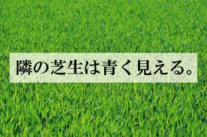 shibahu-300x199