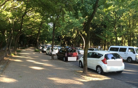 parking1-1024x658