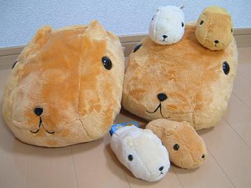 DSCF0024_capybara