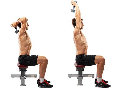 フレンチプレスで上腕三頭筋を鍛え、カッコイイ腕にしよう! : Tomboy Muscle Blog