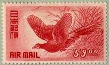 キジ航空 59