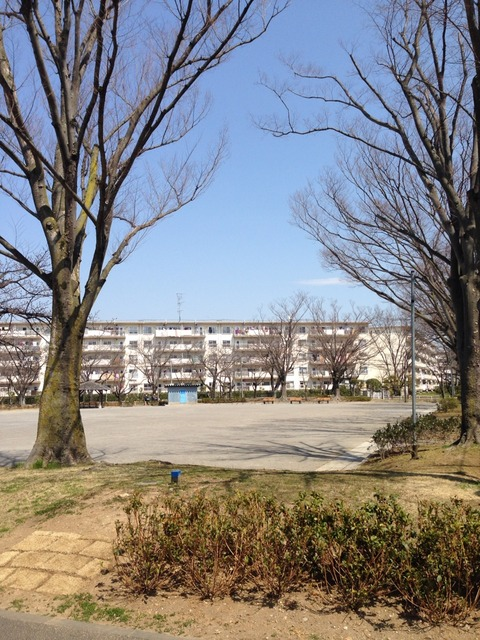 2014-03-25-11-51-40