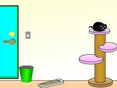 黒猫のいる部屋