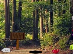 Treasure Trove Escape From Forest