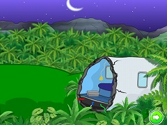 Lost Jungle Escape