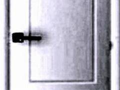 Room Loop Root Door