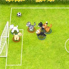 ペットサッカー