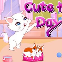 Cute Kitten Daycare