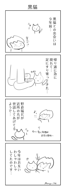 146黒猫