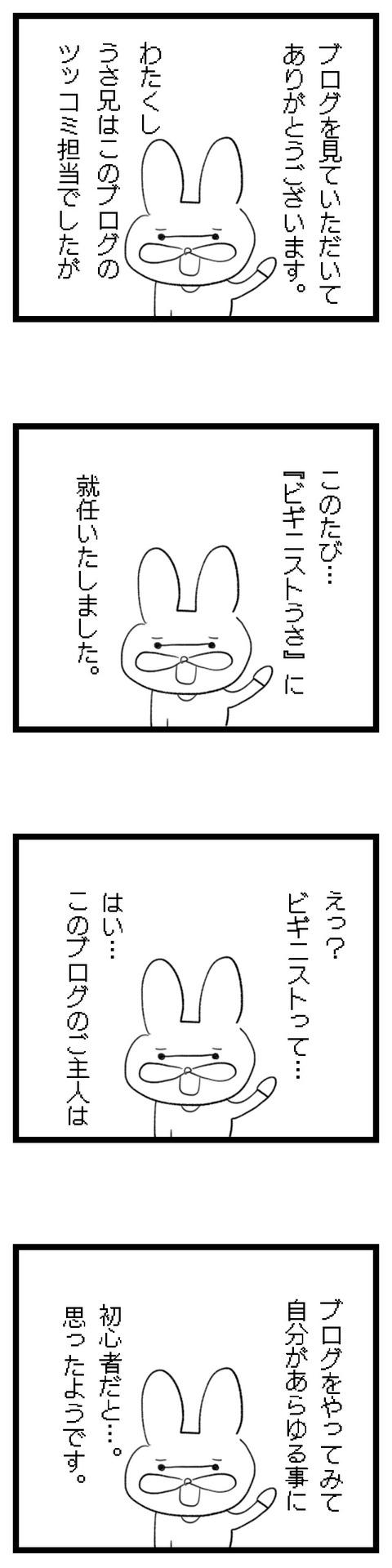 6ビギニストうさ