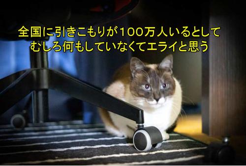 bt190604
