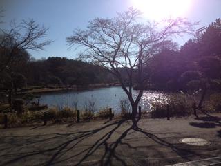 大池公園ランニング!