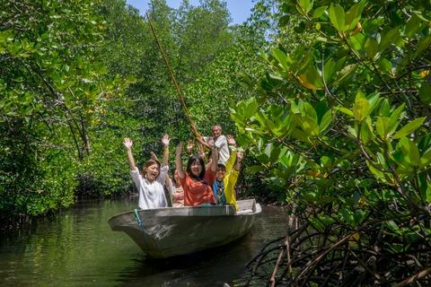 12マングローブの林探検ツアー_DSC3485_1280x853