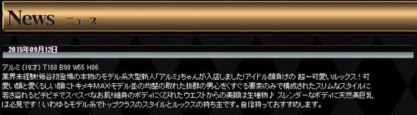 アルミ-Profile-2