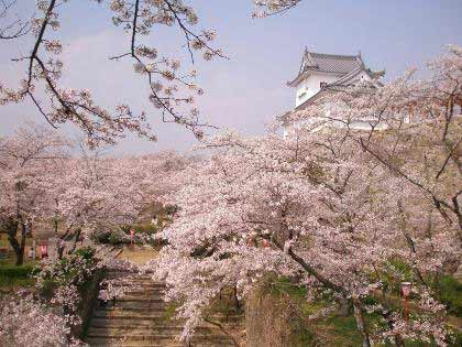 tsuyama