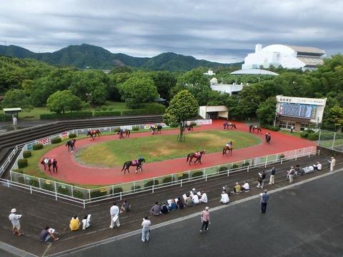 20170806 高知競馬場 第6レース