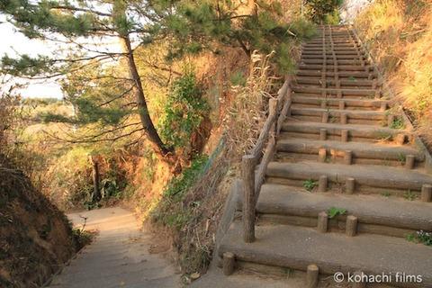 桜_北山公園_2011-04-12 17-44-27