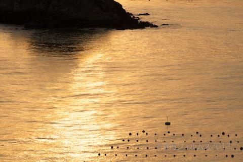 松島の夕日_歌碑公園_2013-02-14 17-08-55