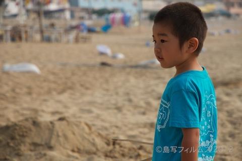 篠島ウミガメ隊_ボランティア_#seaturtle_2012-07-29 07-31-00