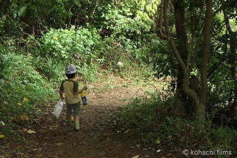 鯨浜_篠島_風景_観光_ 2011-06-08 15-30-09