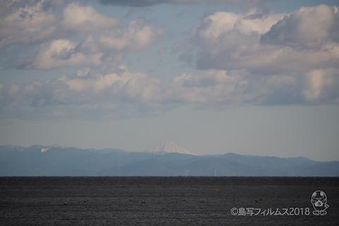 篠島_雪_2018-01-25 11-02-16