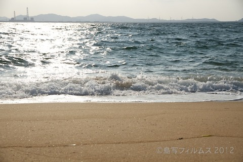 ウミガメ隊_早朝清掃_篠島小学校_2012-10-10 07-43-51