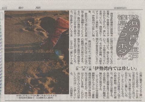 ウミホタル_篠島前浜_辻ミチタカ_2012-04-11 16-44-04