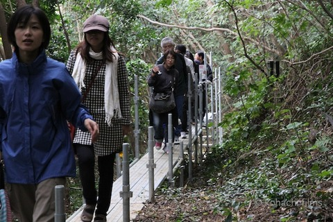 篠島まちづくり会_レクチャーツアー_2011-10-30 11-29-23