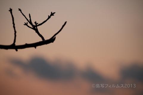 松島の夕日_歌碑公園_2013-02-22 17-40-10