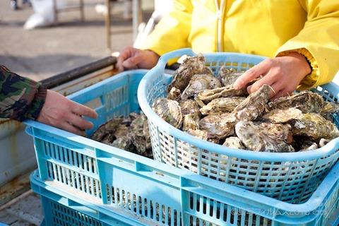 篠島牡蠣祭り_2018-02-11 09-37-18