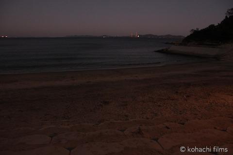 ウミガメ孵化_篠島_写真_前浜_放流_2011-09-06 18-32-15