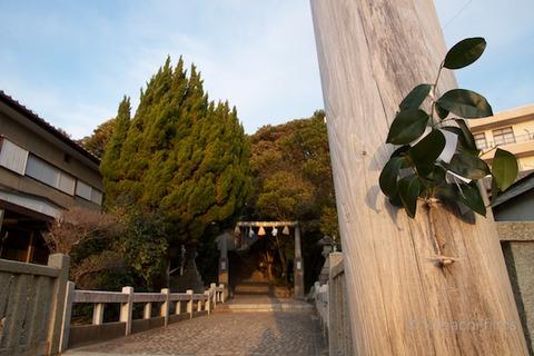 篠島元旦_八王子社_神明神社_2012-01-01 07-26-46