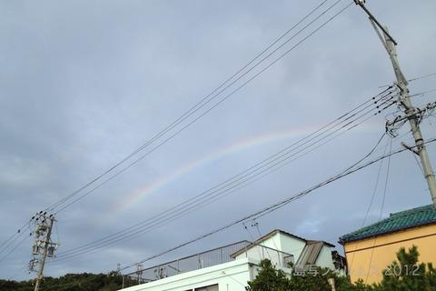 ウミガメ隊_クリーンアップ_2012-08-15 06-12-05