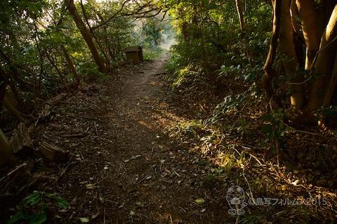 松島の夕日_2015-01-20_16-20-56
