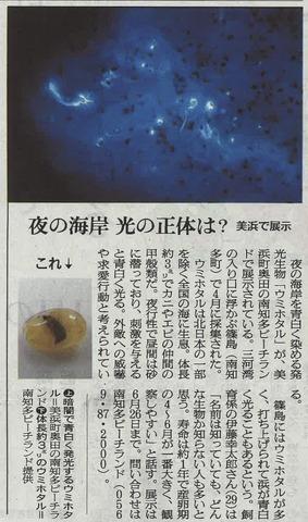 ウミホタル朝日新聞20160517