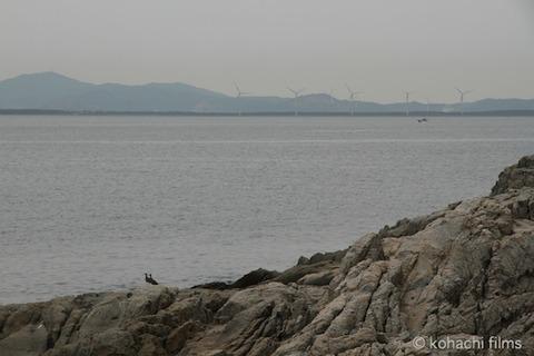 海岸日和_風景_篠島_2011-05-05 09-32-34