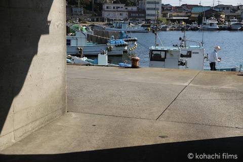 名鉄_アオリイカ_漁港_篠島_風景_観光_2011-09-27 14-26-59