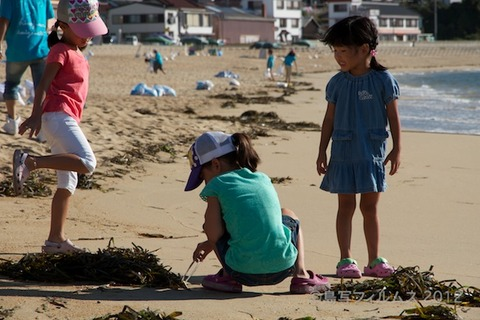 ウミガメ隊_クリーンアップ_2012-08-19 07-39-00