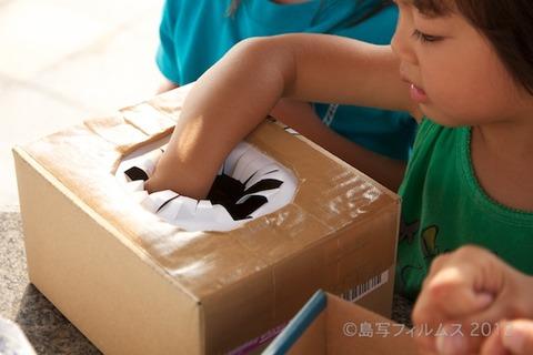 篠島ウミガメ隊_ボランティア_#seaturtle_2012-07-29 07-36-52