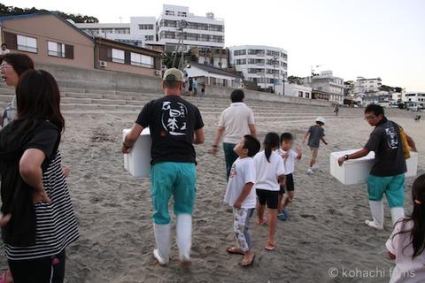 ウミガメ孵化_篠島_写真_前浜_放流_2011-09-06 18-16-48