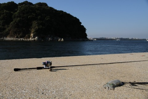 名鉄_アオリイカ_漁港_篠島_風景_観光_2011-09-27 15-21-26