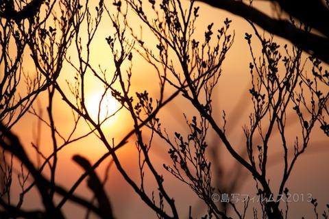松島の夕日_歌碑公園_2013-02-14 17-14-51