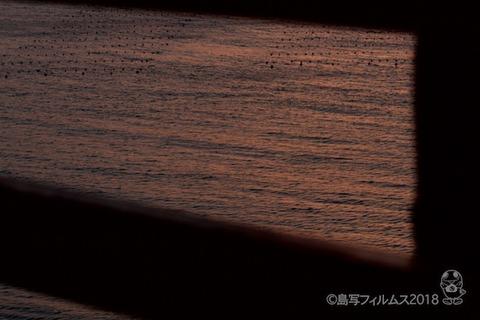 松島の夕日_歌碑公園_2018-02-20_17-35-18