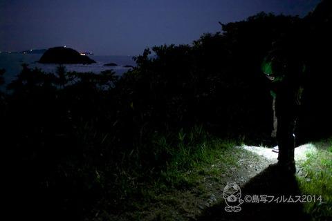 篠島ヒメホタル_2014-05-13 22-19-28
