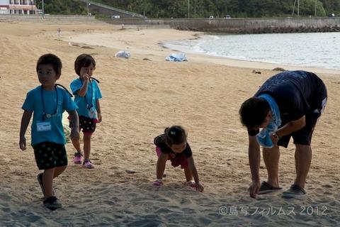 ウミガメ隊_クリーンアップ大作戦_2012-08-29 07-38-44