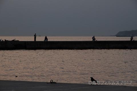 漁港_夕日_篠島_風景_写真_2012-05-05 18-10-48